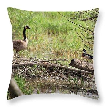 Wildlife Scenery Throw Pillow