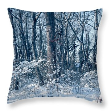 Winter Blue Throw Pillow by Mikki Cucuzzo