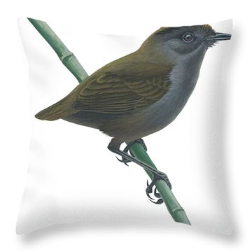 Wrenthrush Throw Pillow