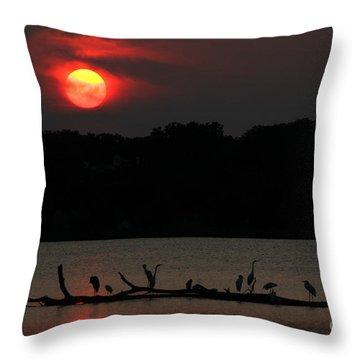 0016 White Rock Lake Dallas Texas Throw Pillow
