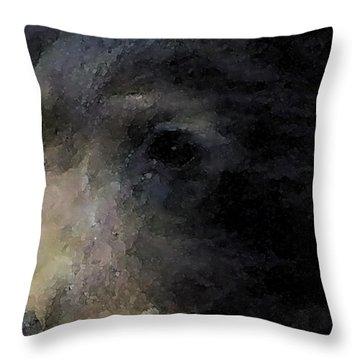 01042014 Black Bear Alaska Throw Pillow