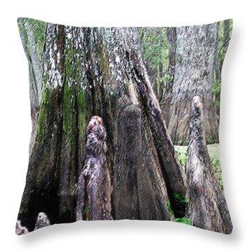 02102015 Honey Island Swamp Throw Pillow