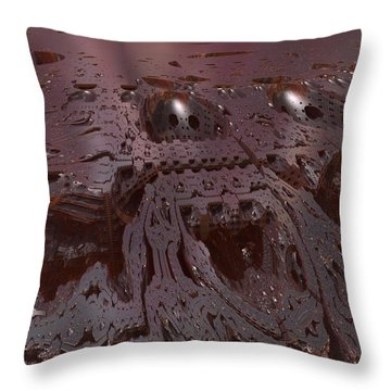 0213 Throw Pillow by I J T Son Of Jesus