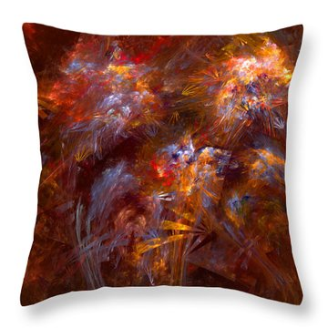 022-13 Throw Pillow