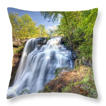 0302 Cuyahoga Valley National Park Brandywine Falls Throw Pillow