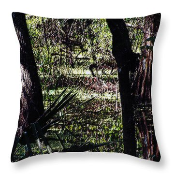 03032015 Southern Marsh Digital Pastel Throw Pillow