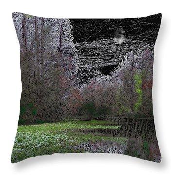 03092015 Throw Pillow