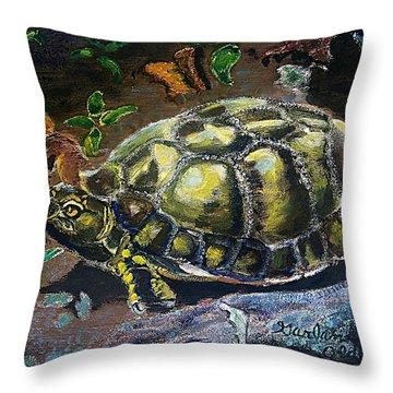 05042004 Box Turtle Throw Pillow