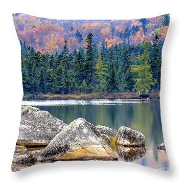 0851 Baxter State Park - Maine Throw Pillow