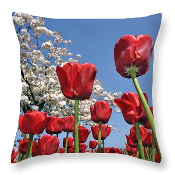 Throw Pillow featuring the photograph 090416p031 by Arterra Picture Library
