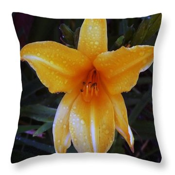 090714 Morning Dew Throw Pillow