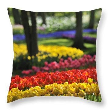 Throw Pillow featuring the photograph 090811p124 by Arterra Picture Library