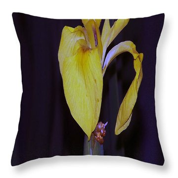 091514 Digital Dry Brush Swamp Lily Throw Pillow by Garland Oldham