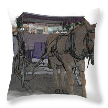 091614 Color Pencil Mule And Carriage Throw Pillow by Garland Oldham