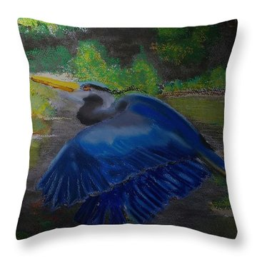 091714 Dawn In The Marsh Throw Pillow by Garland Oldham