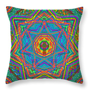 1 26 2014 Throw Pillow