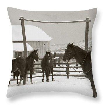 71 Ranch  Throw Pillow