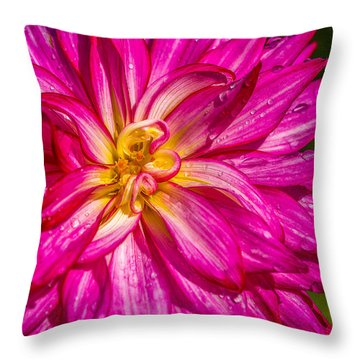 Throw Pillow featuring the photograph A Dahlia Good Morning by Ken Stanback
