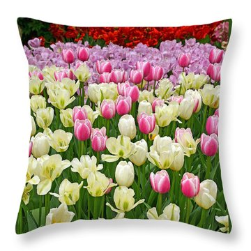 A Field Of Tulips Throw Pillow by Eva Kaufman