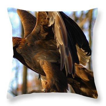A Golden Eagle Throw Pillow by Raymond Salani III
