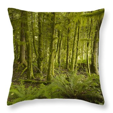 A Lush Forest Tofino British Columbia Throw Pillow by Ian Grant