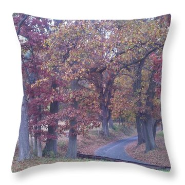 A Path To Follow Throw Pillow