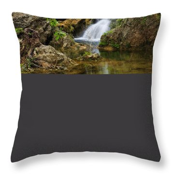 A Quiet Place Throw Pillow by Rick Furmanek
