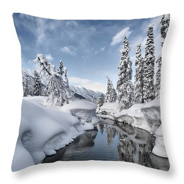 Wonderland Throw Pillow by Ted Raynor