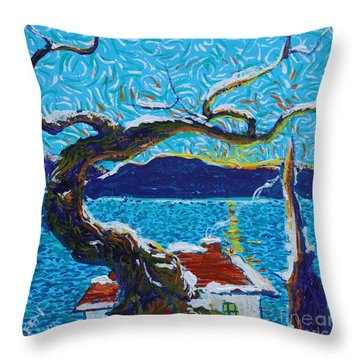 A River's Snow Throw Pillow