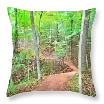 A Trail Through The Woods Throw Pillow