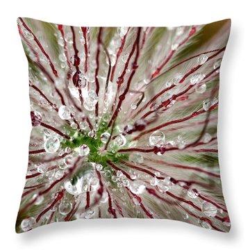 Abstract Macro Flower Head Throw Pillow