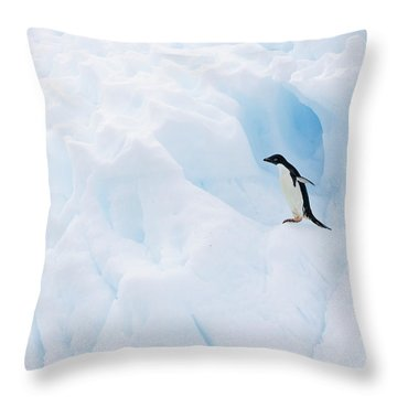 Adelie Penguin On Iceberg Throw Pillow by Suzi Eszterhas
