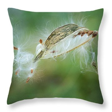 Against The Wind 2 Throw Pillow by Fraida Gutovich