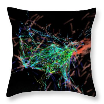 Information Graphics Throw Pillows