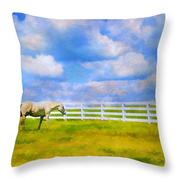 Alone Throw Pillow by Darren Fisher