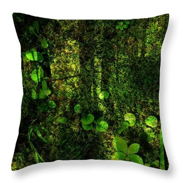 An Earthy Place Throw Pillow by Shirley Sirois