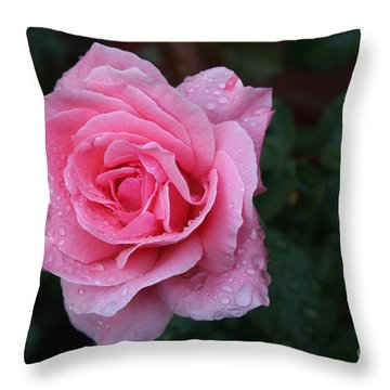 Angel Face Rose Throw Pillow