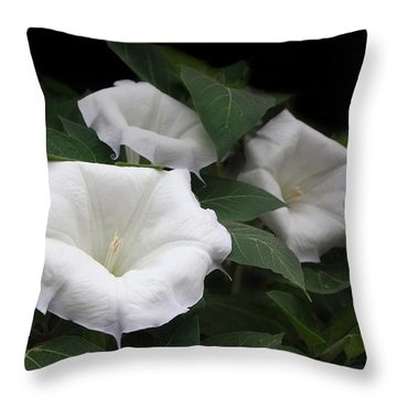 Angels Trumpet Datura  Throw Pillow by Angie Vogel