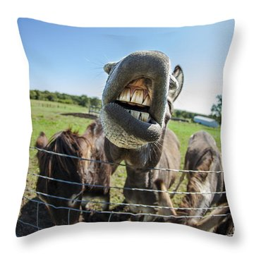 Animal Personalities Silly Talking Donkey With Whiskers Throw Pillow by Jani Bryson