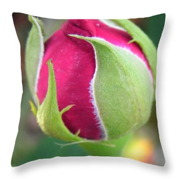 Throw Pillow featuring the photograph Anticipation by Deb Halloran