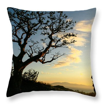 Approaching Summit Throw Pillow