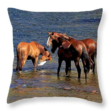 Arizona Wild Horses On The Salt River Throw Pillow