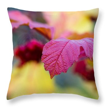 Arrowwood Leaf - Featured 3 Throw Pillow