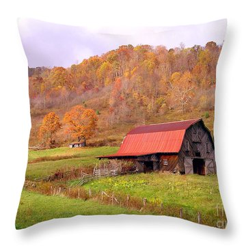 Ashe County Barn Throw Pillow