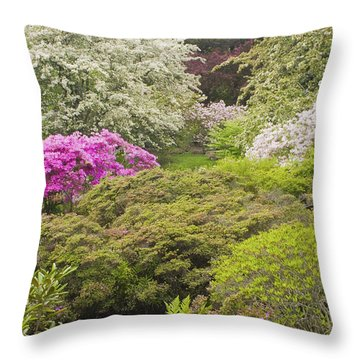 Asticou Azelea Garden - Northeast Harbor - Mount Desert Island - Maine Throw Pillow by Keith Webber Jr