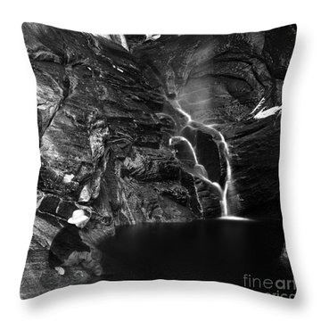 At Waters Edge Throw Pillow by Christian Slanec
