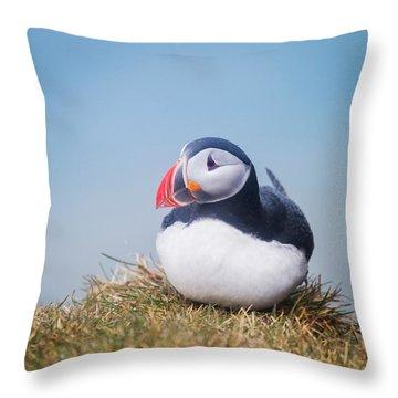 Atlantic Puffin Fratercula Arctica Throw Pillow
