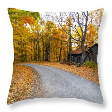 Autumn And The Old House Throw Pillow