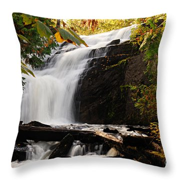 Autumn At Cattyman Falls Throw Pillow