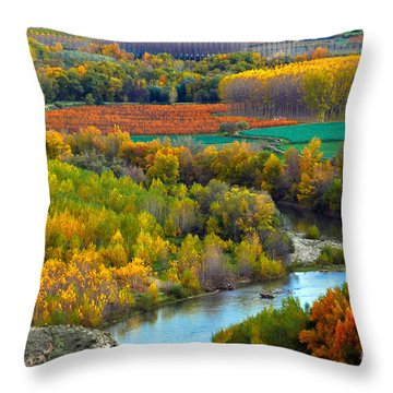 Autumn Colors On The Ebro River Throw Pillow